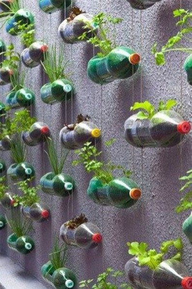 Unusual Vegetable Garden Ideas For Home Backyard 19