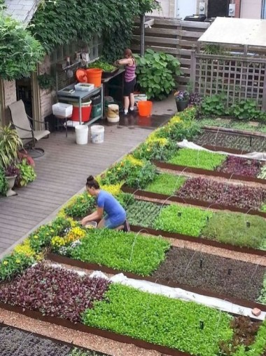 Unusual Vegetable Garden Ideas For Home Backyard 34