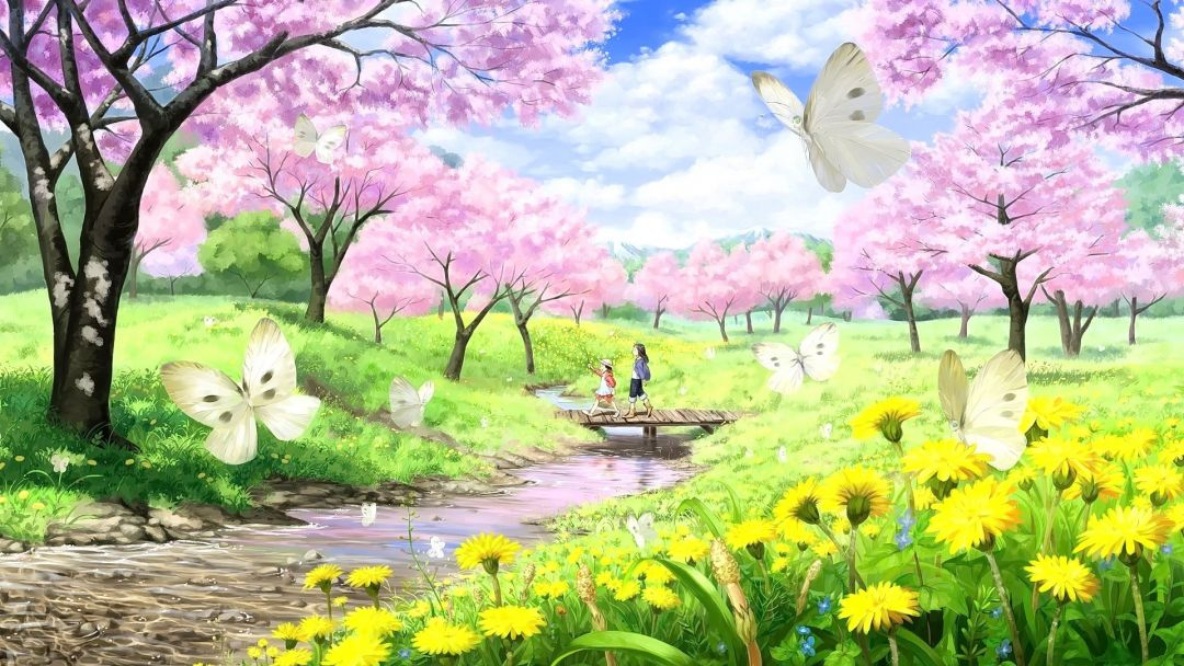 44 Best Anime Cherry Blossom Wallpaper Pc Background Anime Wallpapers