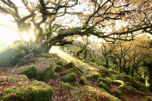 Amazing Nature lanndscape photography 01