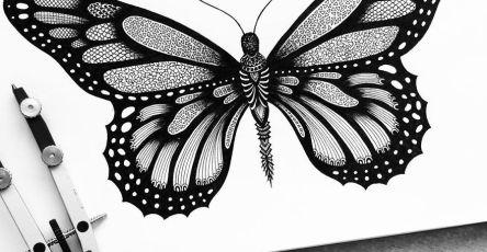Black and White Detailed Drawing Art by Pavneet Sembhi