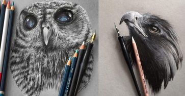 Stunning Realistic Pencil Drawing of Animals by Jonathan Martinez