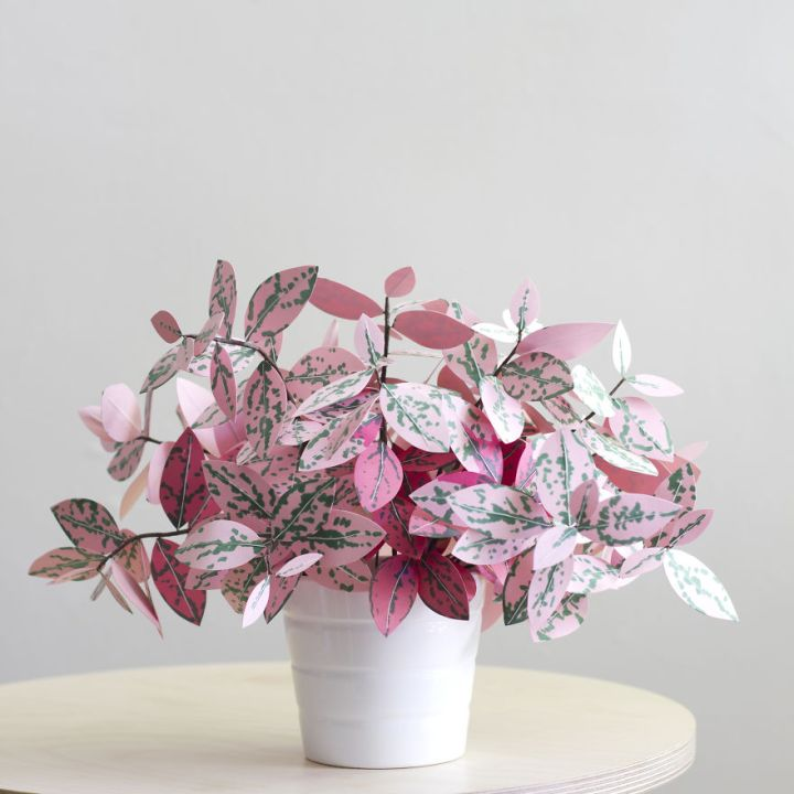 Beauty Plants made from paper 99