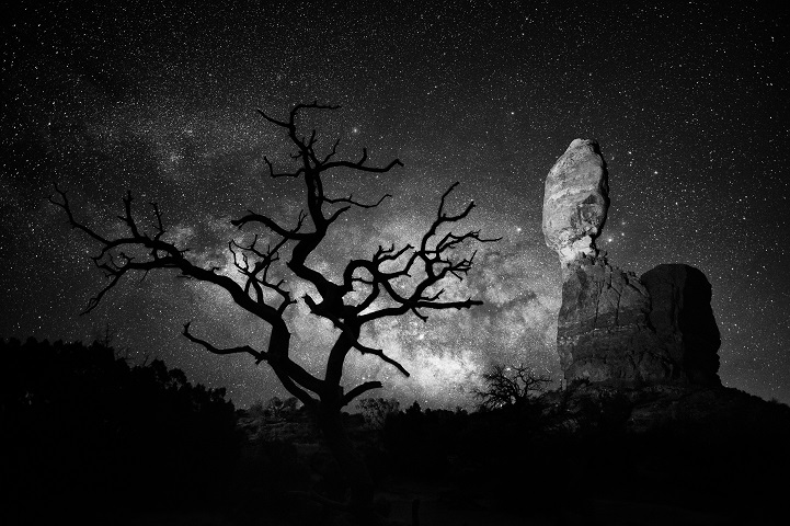 Balanced Rock and lone tree in Arches National Park.