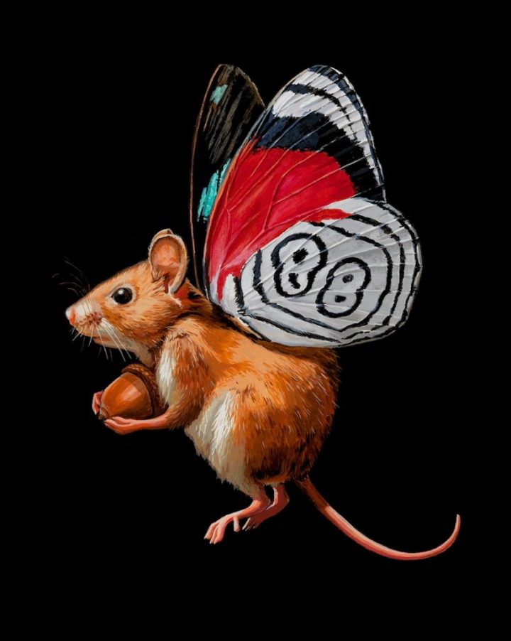 wonderful-paintings-tiny-mouse-with-butterfly-wings-by-lisa-ericson