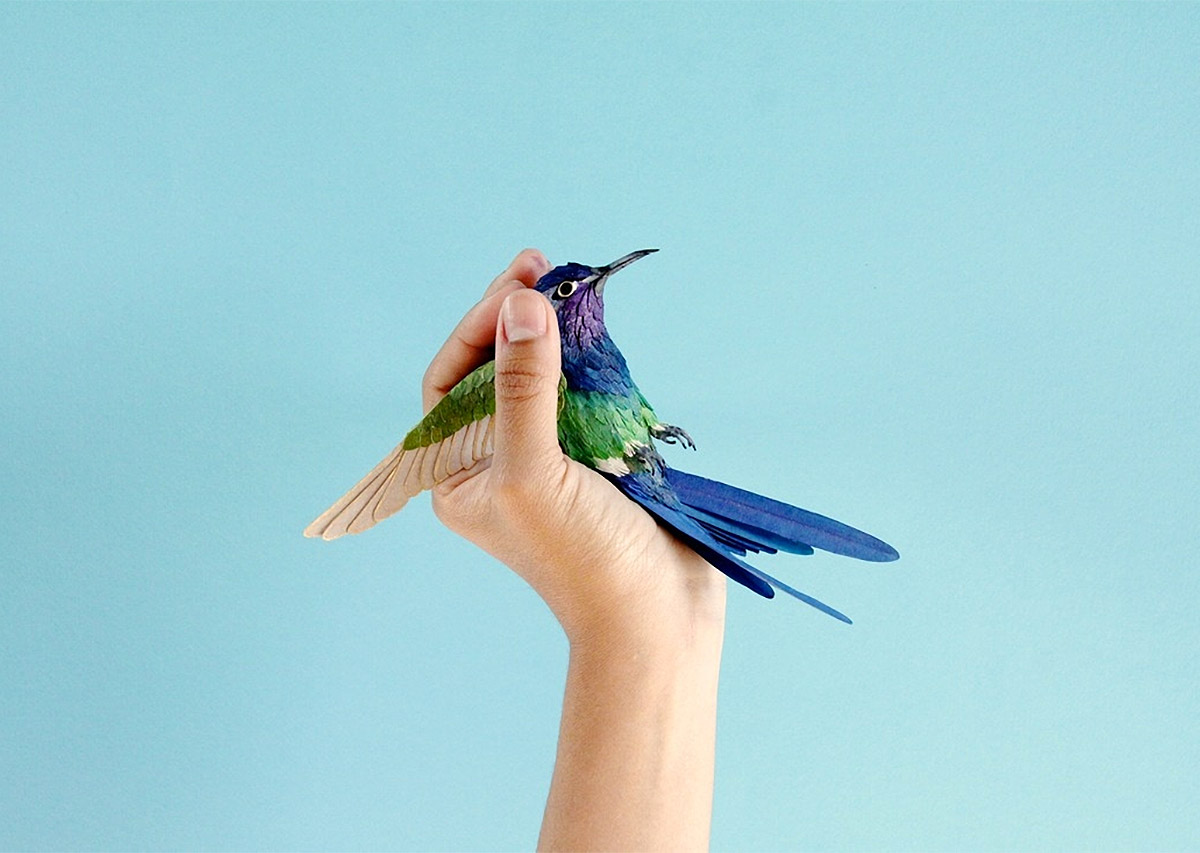 Colourful Paper Bird Sculptures by Diana Beltran Herrera