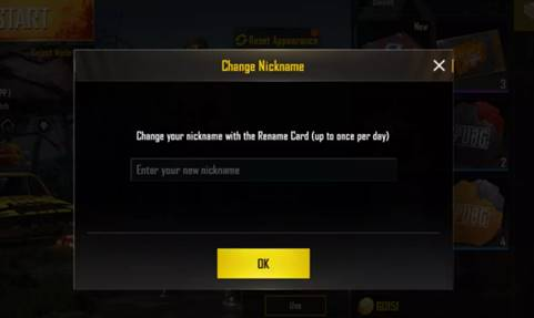 Change name on pubg