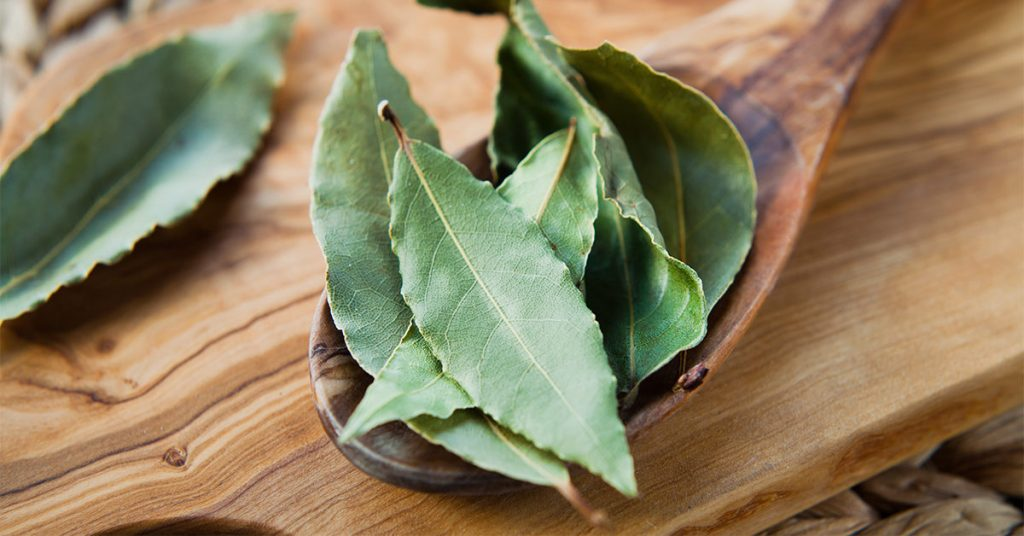 bay leaf meaning in hindi