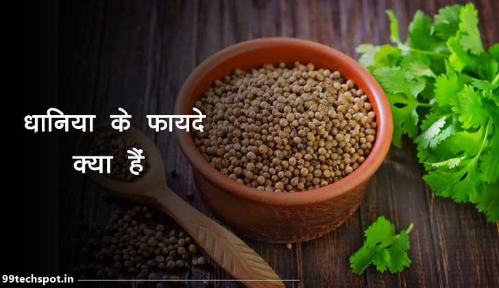 coriander meaning in hindi