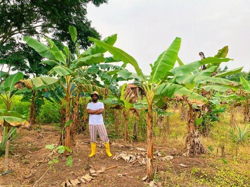 Maleek Berry New Farm Ogun State Photos