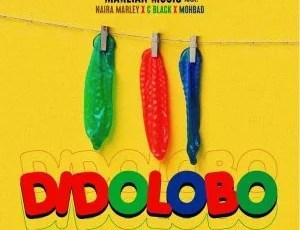 Download Naira Marley, C Black, Mohbad – Dido Lobo