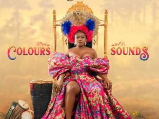 Download: Niniola - Colours & Sounds Album
