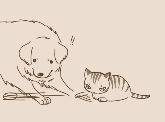 animal-friends-cat-dog-comics-lynal-12
