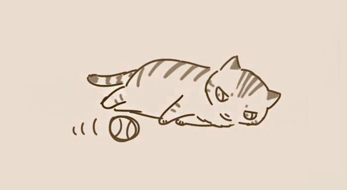 animal-friends-cat-dog-comics-lynal-26
