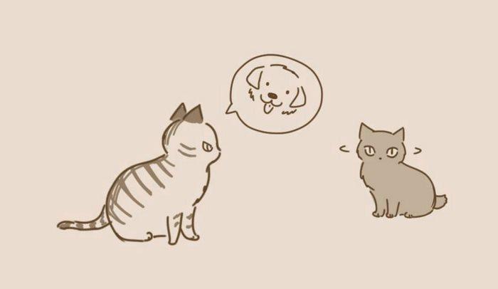 animal-friends-cat-dog-comics-lynal-3