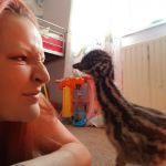 ebay-emu-egg-hatches-kevin-the-emu-1