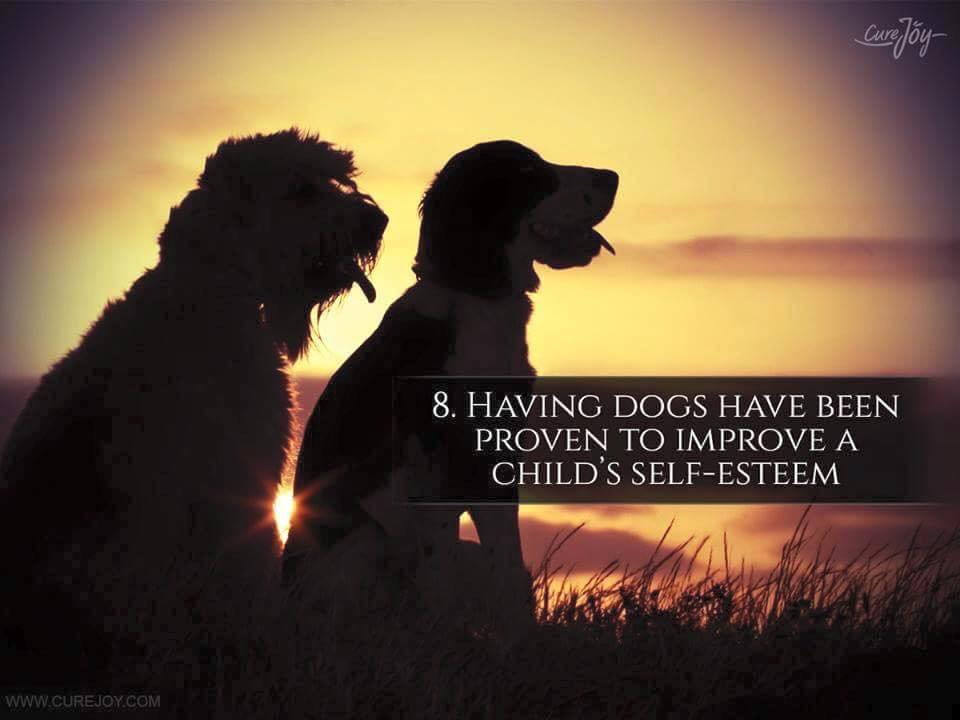 Reason-8-Having-Dogs-Have-Been-Proven-To-Improve-A-Childs-Self-Esteem-via-9Mood