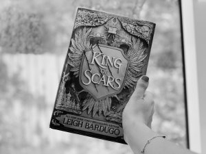 Read more about the article A Very Spoilery Chat: King of Scars Review