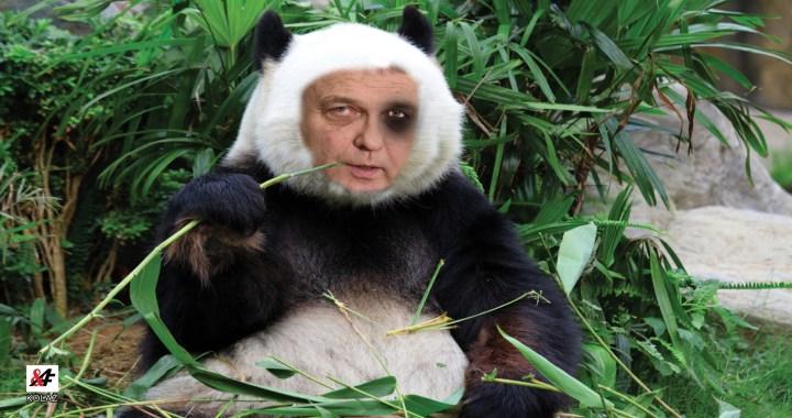 Nebezpečný popleta Zaorálek (ČSSD) selhal hned při prvním kroku ve funkci ministra kultury. Jako by mravenec ožužlal kořínek dubu a myslel, že tím změní celý les