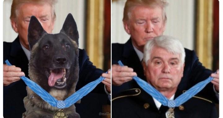 Válka o mrtvého teroristu: Trump vyznamenal psa a levice šílí. Teroristovy trenýrky stále ve hře. Dvě exkluzivní videa z pouštní akce Zabít krtka. Dělají z nás úplné hlupáky, ale i tak je to legrační. Mainstream drží basu