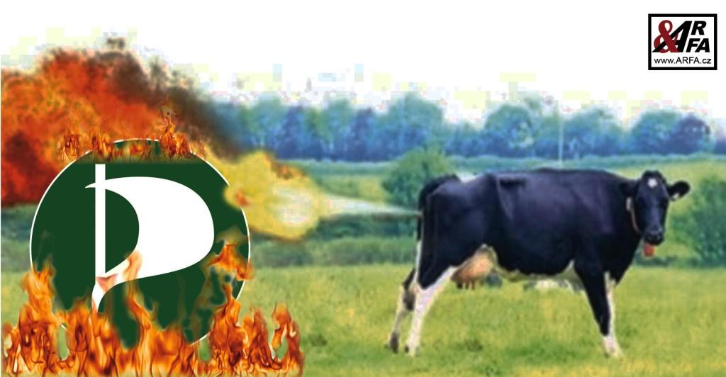 Prdíme chytře! Piráti a Zelení chtějí v Evropské unii omezit prdění krav tím, že o třetinu zvýší cenu za maso! Celé dohromady to má zachránit planetu