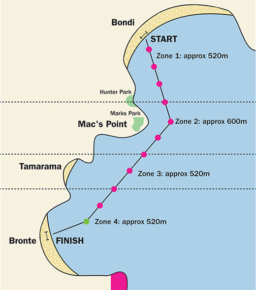 Bondi to Bronte Swim Course