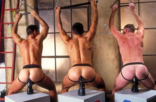 Gay Buttplug