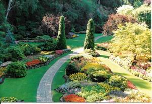 Butchart Gardens in Victoria, B.C. feels like wandering inside a beautiful painting. My favorite spot in the world.