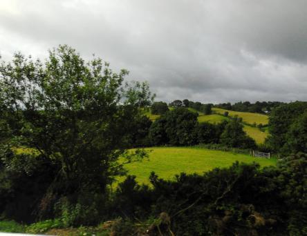 Ireland's luminous green