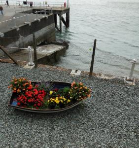 This boat in Cobh serves as a floating garden.