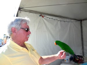 This is not a parrot, the man explained. This is an exotic bird from Australia and stopped at our booth to meet us.