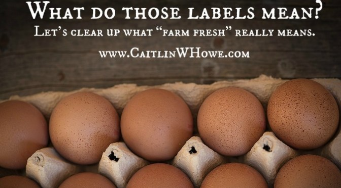 What do all those labels mean on your eggs