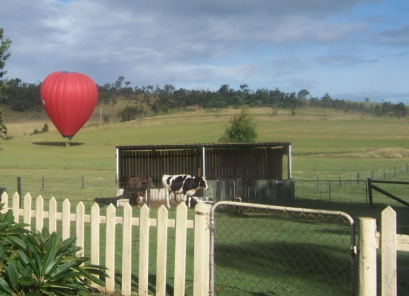 Hot air balloons are not only a local activity, they are frequently enjoyable from the farm.