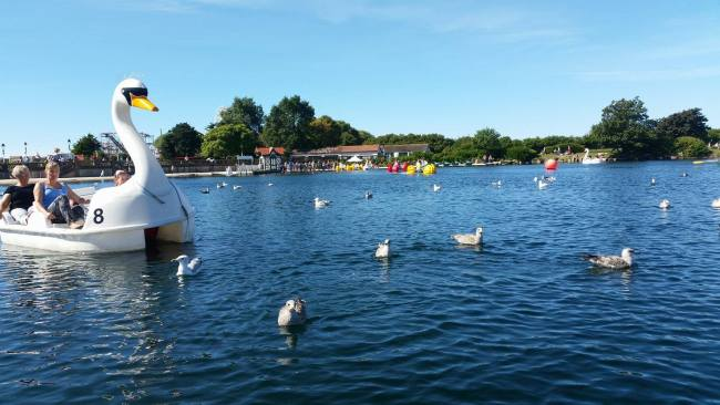 Day Out at Swan Lake - Southport