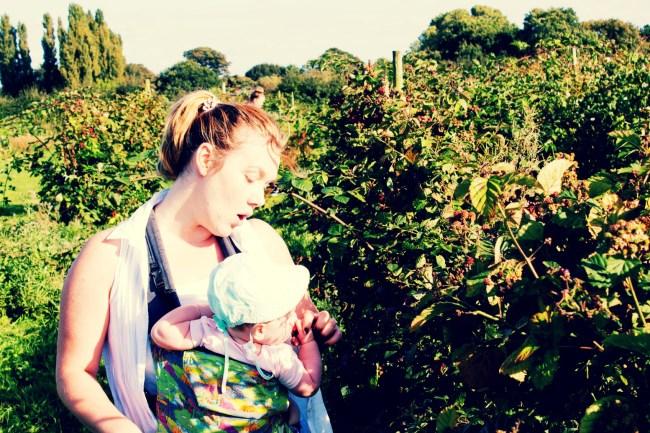 Sour Blackberries