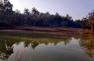 lake Kanha National Park Tiger reserve