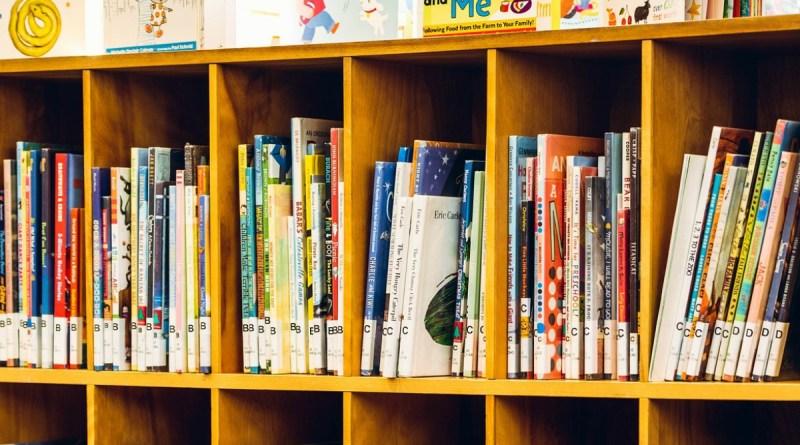 Summer Reading Books for Grades K-8