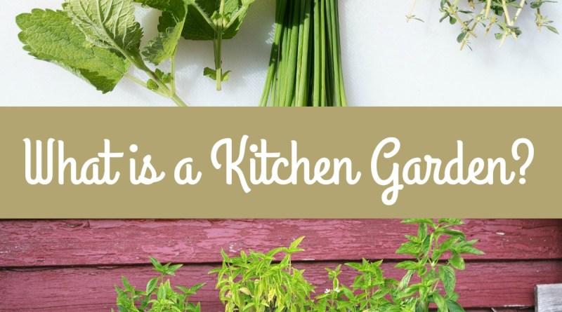 What is a Kitchen Garden?