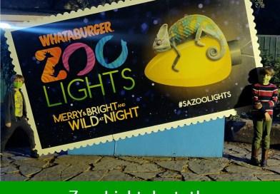 San Antonio Zoo Lights 2020