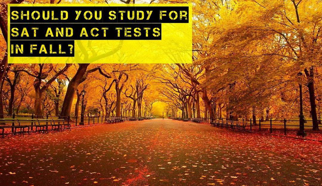 Should You Study for the SAT and ACT Tests in November and December?