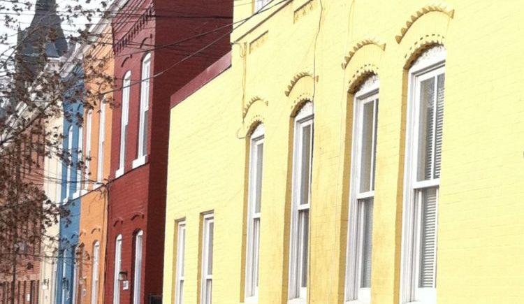 see the colorful row houses in Georgetown, Washington DC