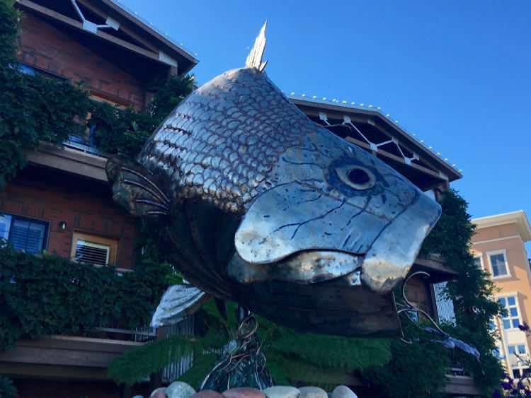 cool things to see in Napa California: Fish On by Terrence Martin