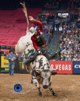 Lindomar Lino competing in the PBR Saint Louis Invitational. Photo by Sean Derrick/Thyrd Eye Photography.