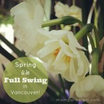Spring is in Full Swing in Vancouver!