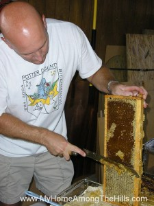Cutting the cappings from the honey cells