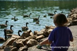 Abigail feeding geese