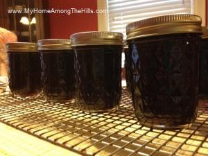 Homemade grape jelly!