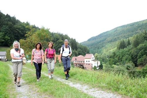 Odenwald Wandern im Hoellgrund2