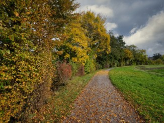 Autumn Away Lane Nature Landscape
