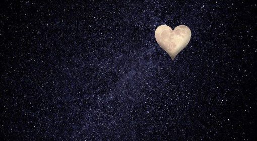 Love in the Dark Matter of the Universe